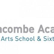 The Ilfracombe Academy